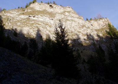 Rocky wall of the Homole Gorge, Pieniny Mountains.
