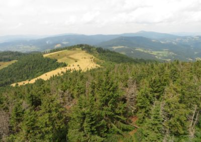 View from Mt Gorc towards north, at Mt Mogielica: typical landscape of the Beskid Wyspowy (Island Beskidy) Mountains