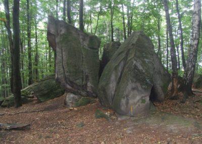 Bukowa Crag group, Devonian quartzitic sandstones