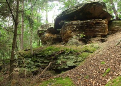 Adamów crag group, Jurassic sandstones (will be visited during the Symposium field session)