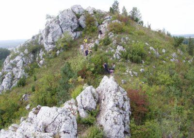 . Rocky crest of Mt Miedzianka (Copper Hill; inanimate nature reserve) built of Devonian massive limestones