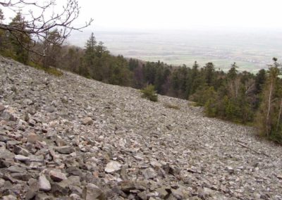 Block-field formed of Cambrian quartzitic sandstones on a slope of Mt Łysiec (Bald Hill, 595 m a.s.l., in the highest Łysogory Range, Świętokrzyski National Park) toward east, at the Jeleniowskie Range; built of Cambrian quartzitic sandstones.