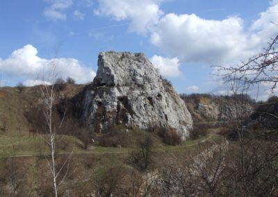 "Skałka Geologów (Rock of Geologists; inanimate nature reserve ""Kadzielnia"") within the Kadzielnia abandoned quarry, in the Kielce town: relict karst conduits (caves) in Devonian massive limestone"